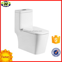 Hot Sale Floor Mounted Types WC Toilet Parts