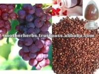 Pure Grape Seed Extract