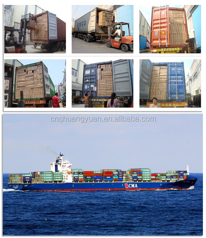Loading Container & Shipping.jpg