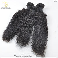 Best Quality Unprocessed Mink Kinky Curly Different Color Hair Weaves
