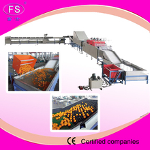 mango processing plant/mango washing machine/onion grading machine