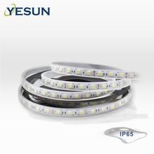 China Supplier Flexible silicon tube led strip 5m/roll 12V waterproof 5050 white color decoration led strip light