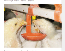 Automatic poultry nipple drinker equipment/chicken farm drinking system for sale