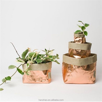 Rose Gold Foil Metallic Washable Kraft Paper Stand Up Bags for Planter Wholesale