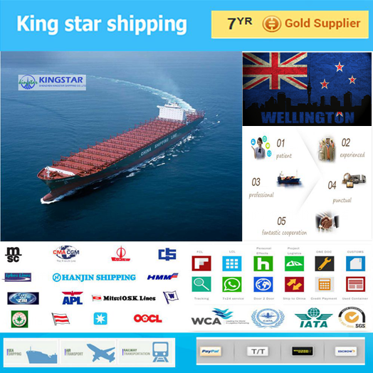 Professional shipping company Agent service Sea freight rates China to Wellington New Zealand