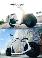 60KM/H Electric Motorcycle With High Uphill Performance citycoco with seat
