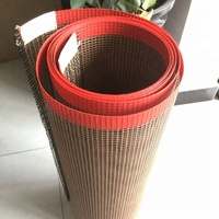 China black PTFE fiberglass dryer machine mesh conveyor belt