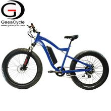 GaeaCycle high power electric bike cruiser fat electric bicycle for adult