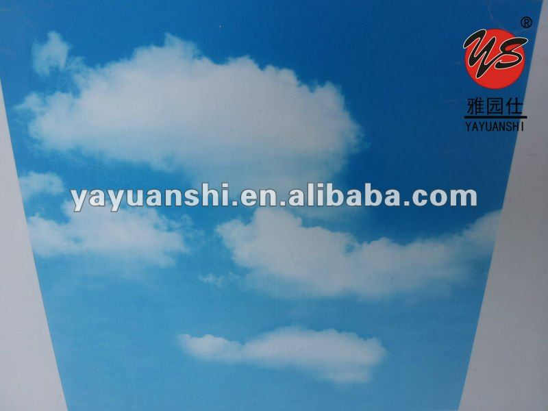 blue sky pvc ceiling panels in china