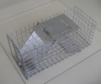 Live animal and squirrel cage traps