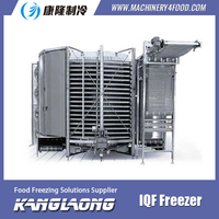 New BrAnd Meat Industrial Freezer