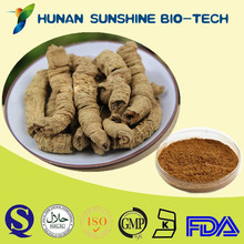 Hot Sale Radix Morindae Officinalis extract Warming the Kidney