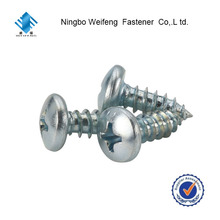 Pan Head Phillips Self-tapping Screw from Zhejiang Province lead cheap China