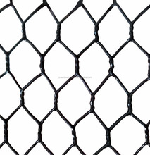 3/4 Size Green Black PVC coated welded aquaculture Crawfish Lobster Trap Wire Mesh