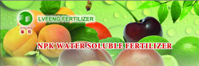 100% Water Soluble Fertilizer NPK 3-37-37, Top qaulity, low price