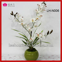 decorative ceramic potted dried jasmine flowers white