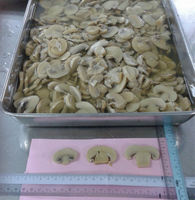 Canned Mushrooms Sliced (Product of Malaysia)