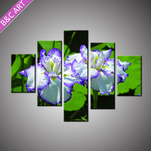 Modern Decorative Arts Frameless High Quality Orchid Flower Canvas Prints with Stretcher Bar