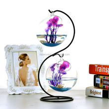 Hanging glass terrarium glass vase with metal stand for fish or plant