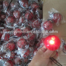 High Qualtiy Promotion Bar Gift Red Nose Chirstmas LED Clown Nose with Light