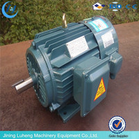 electric golf cart motor /electric fireplace motor/brushless electric motor
