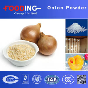 dehydrated white onion flakes chopped Wholesale
