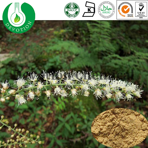 Nutritional Supplement Black Cohosh Root Extract Triterpene Glycosides