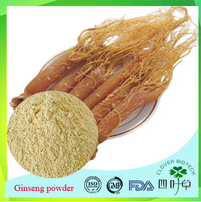 Korean Red Ginseng , Indian Ginseng Extract Powder with Best Price 2017