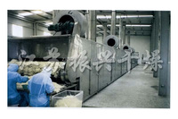 Fruit and vegetable/food/date Drying Machine/Fruit and vegetable dehytrator