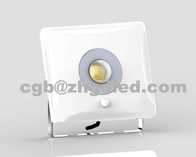 215012 High Quality Die Cast Aluminum 10 30 50w Slim Mini Ip65 China led flood light