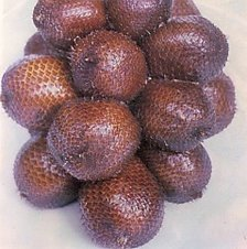 Fresh Fruit Salak/Salaca/Snake Fruits