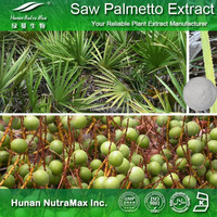 GMP Supplier Natural Plant Saw Palmetto Fruit Extract 25% 45%
