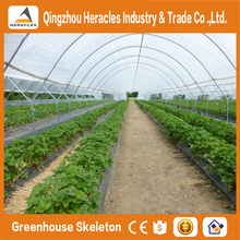 Heracles trade saaurance greenhouse plastic cover -uv treated plastic film for greenhouse agricultural