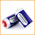 High capacity EVERBRIGHT D/R20 battery
