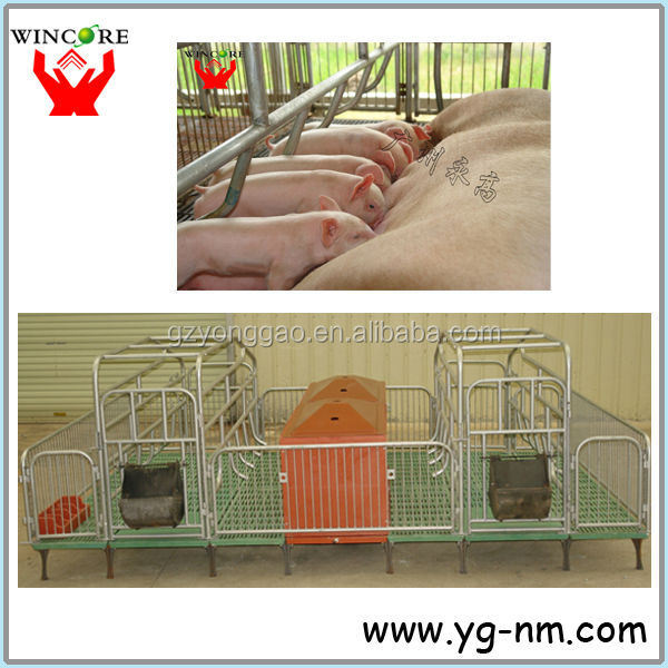 Pig farrowing/nursery/Fattening crate BMC Floor
