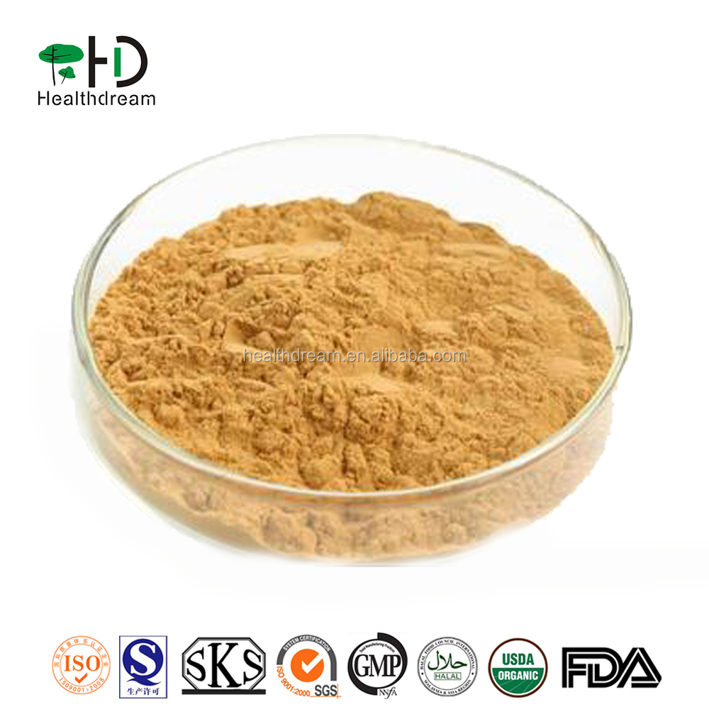 Top quality natural Bacopa monnieri extract 20-50% Bacopasides