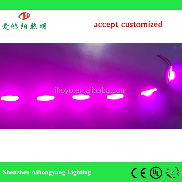 RGB module!!! IHY A9 12V/24V 2W RGB cob led module for outdoor decoration