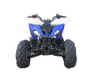 2014 new style hot sale popular 150cc 4 wheels atv for adult