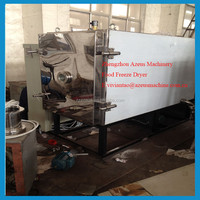 Industrial fruit vacuum freeze drying machine /french fries freeze dryer