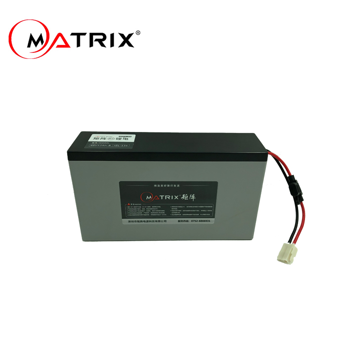 China li ion battery packing factory supply 36v 10ah e bike battery rear rack
