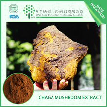 Chinese Factory plant medicine extract Chaga Mushroom Extract polysaccharide chaga powder 15%-40%