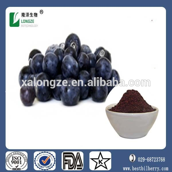 Antioxidant Maqui berry Extract Powder with High Content Anthocyanidins 1-25%