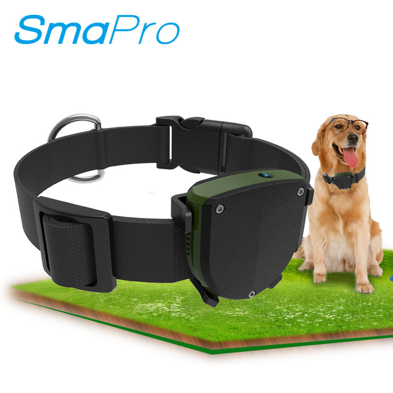 Track Lost Dog <strong>GPS</strong> GSM Realtime Locator Tracker Cat Collar Waterproof Mini Pet <strong>GPS</strong> Tracker