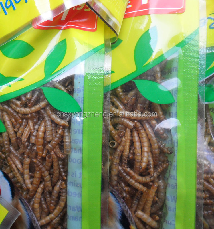 yongzheng pet food 2.5cm dried mealworms
