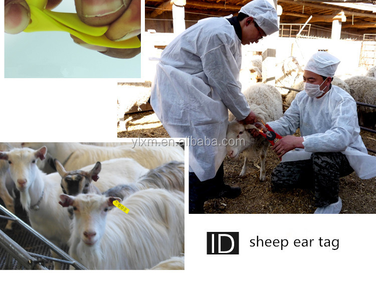 Cheap Animal ID Mark Plastic Sheep Ear Tag