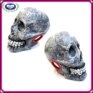 China Manufacturer Halloween Party High Quality Resin Skull Speaker