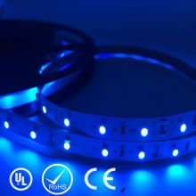 UL Listed Nonwaterproof 1.5W/FT 18LED 144LM/FT 16.4FT Roll 80RA CRI Blue Color High Power Led Chip 24V SMD 3528 LED Strip