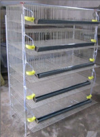 hot sale metal quail cages for sale in Qatar