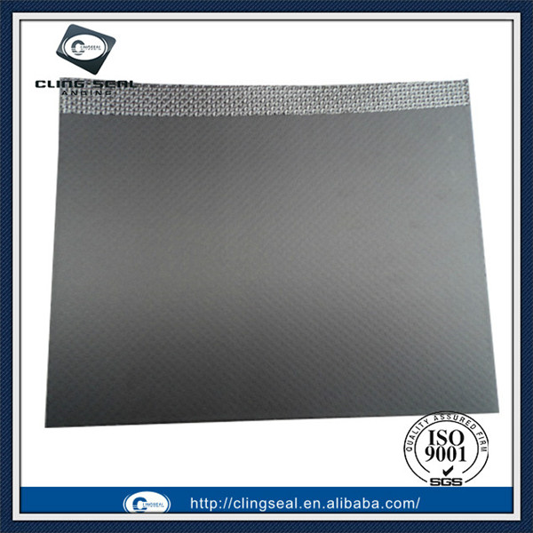 Expanded graphite sheet gasket reinforced by Stainless Steel insert