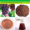 top quality and hot selling natural grapefruit seed powder extract